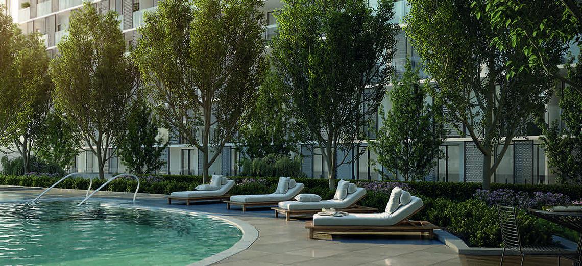 M City Luxury pool