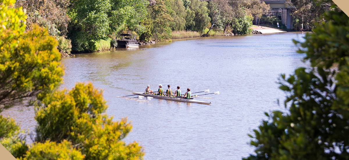 elan apartments suburb yarra river rowing neighbourhood melbourne